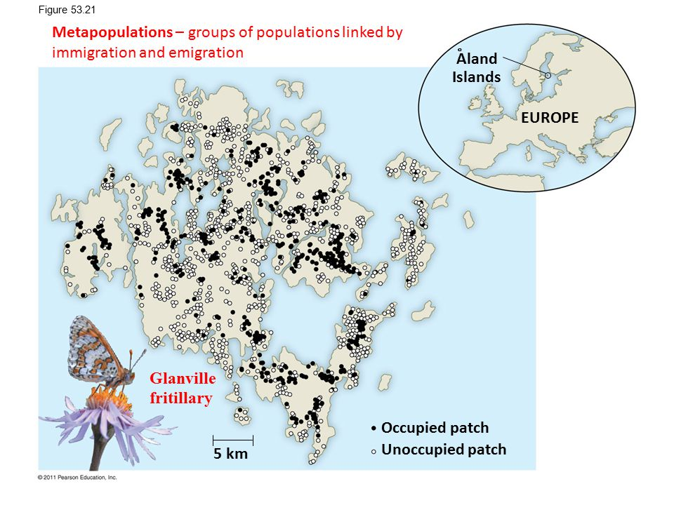 Figure 53.21 Metapopulations – groups of populations linked by immigration and emigration. Aland. Islands.