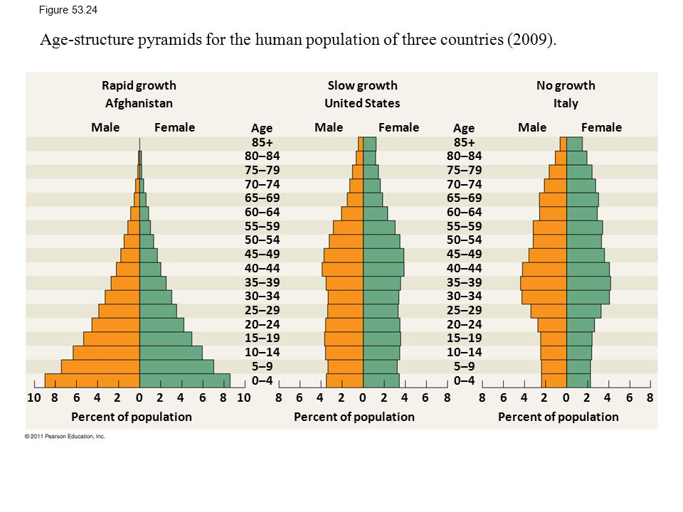 Figure 53.24 Age-structure pyramids for the human population of three countries (2009). Rapid growth.