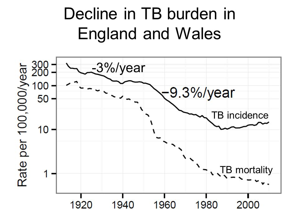 Decline in TB burden in England and Wales