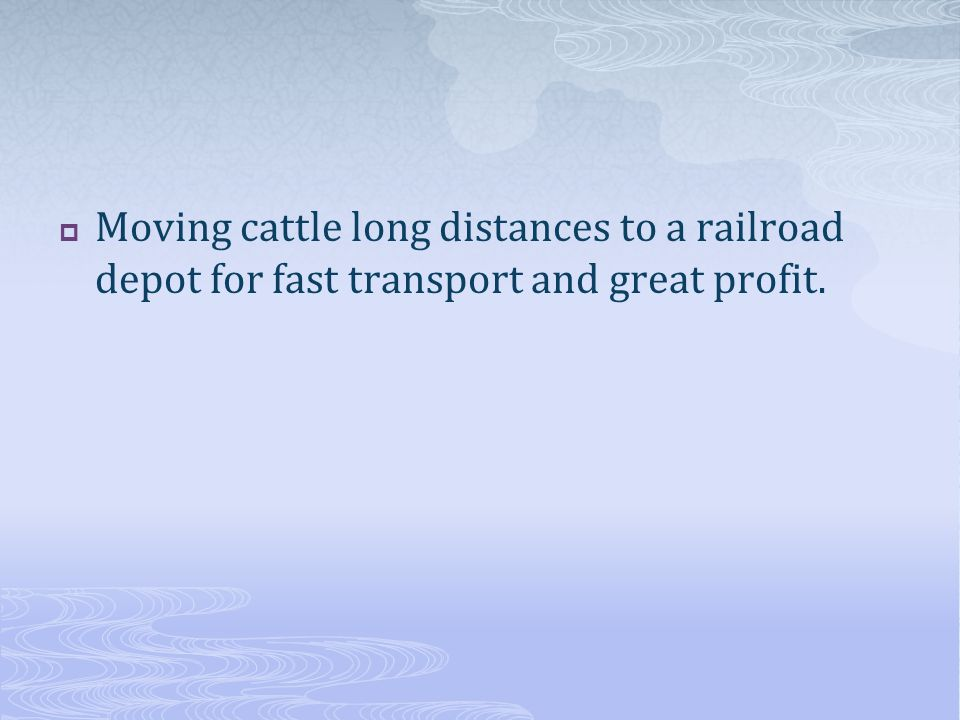 Moving cattle long distances to a railroad depot for fast transport and great profit.