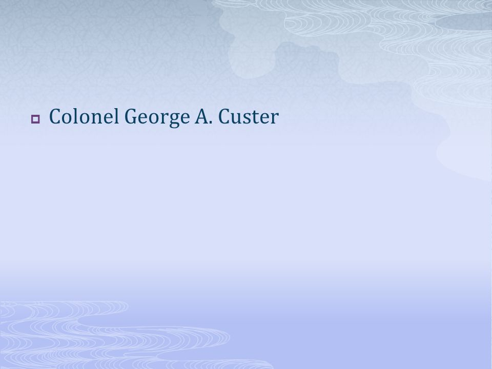 Colonel George A. Custer