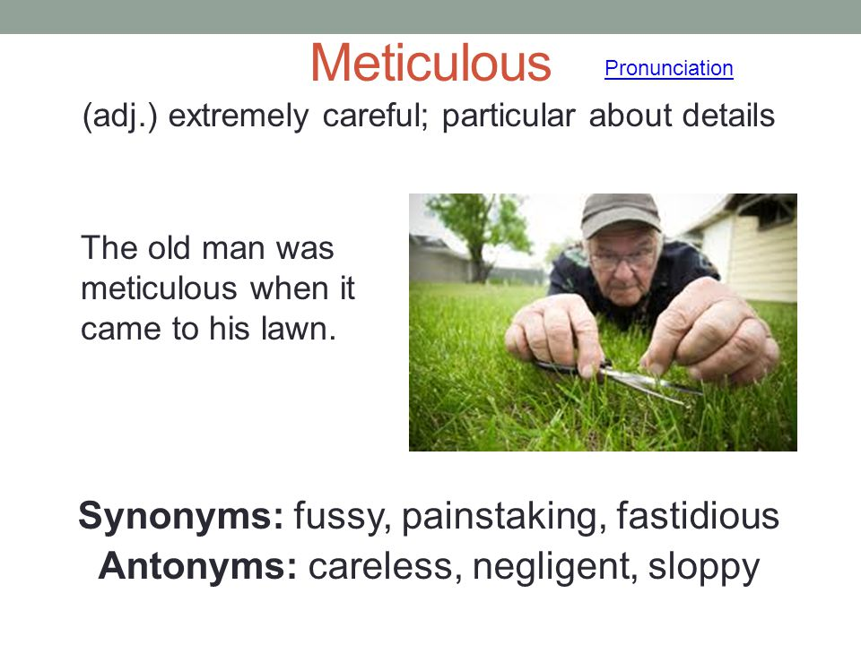 Meticulous Synonyms: fussy, painstaking, fastidious