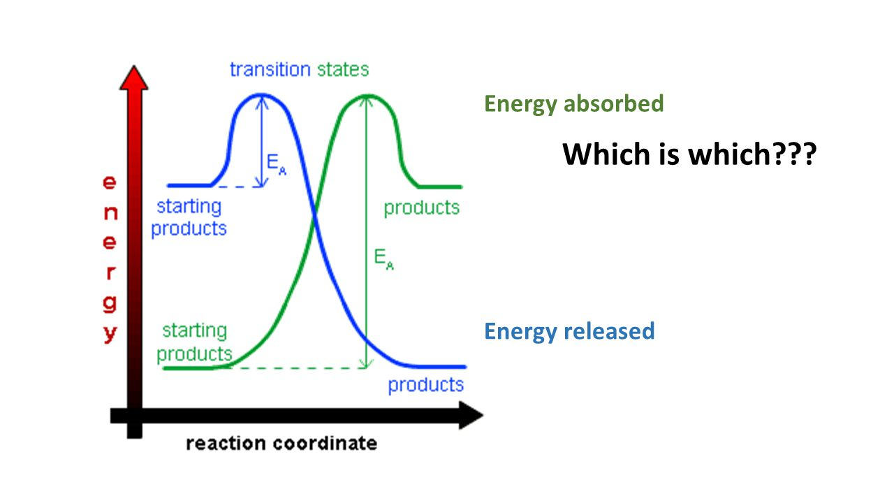 Energy absorbed Which is which Energy released