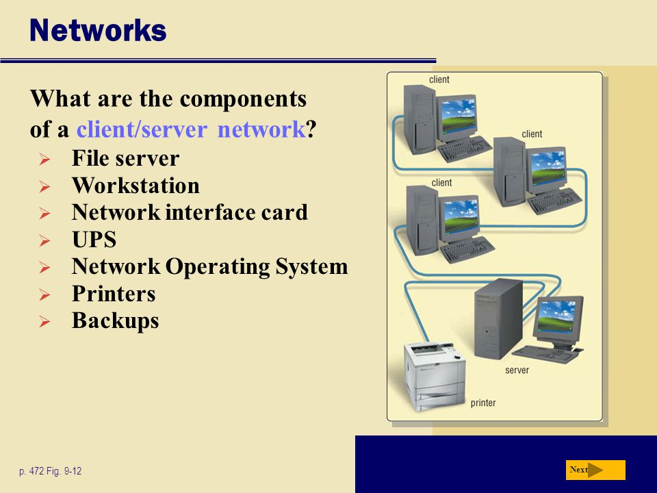Networks What are the components of a client/server network