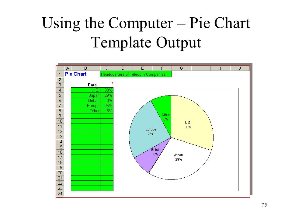 Using the Computer – Pie Chart Template Output