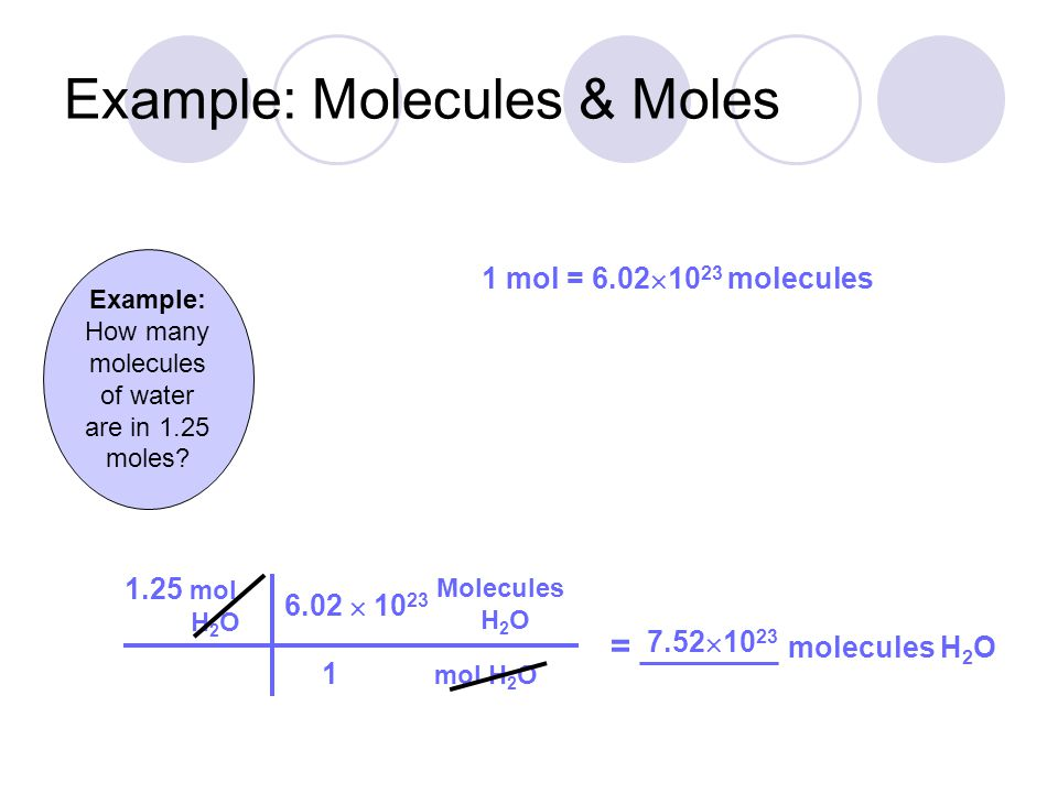 Example: Molecules & Moles
