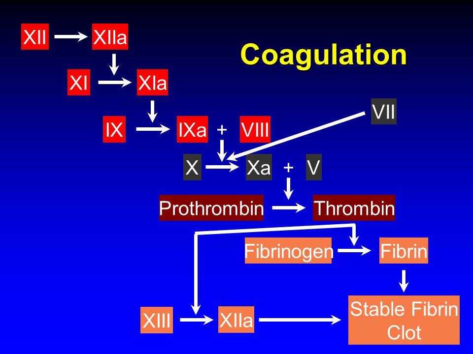 Coagulation XI XIIa XII VIII IX XIa IXa + Xa X VII V + Prothrombin