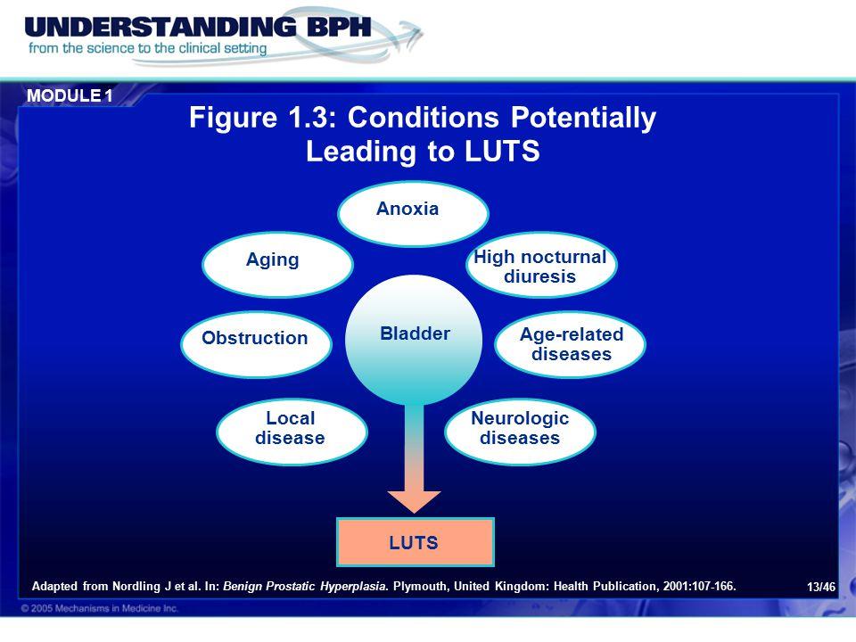 Module 1: BPH – The Disease