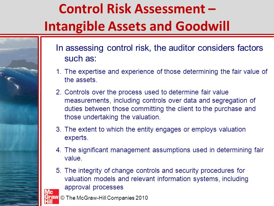 Control Risk Assessment – Intangible Assets and Goodwill
