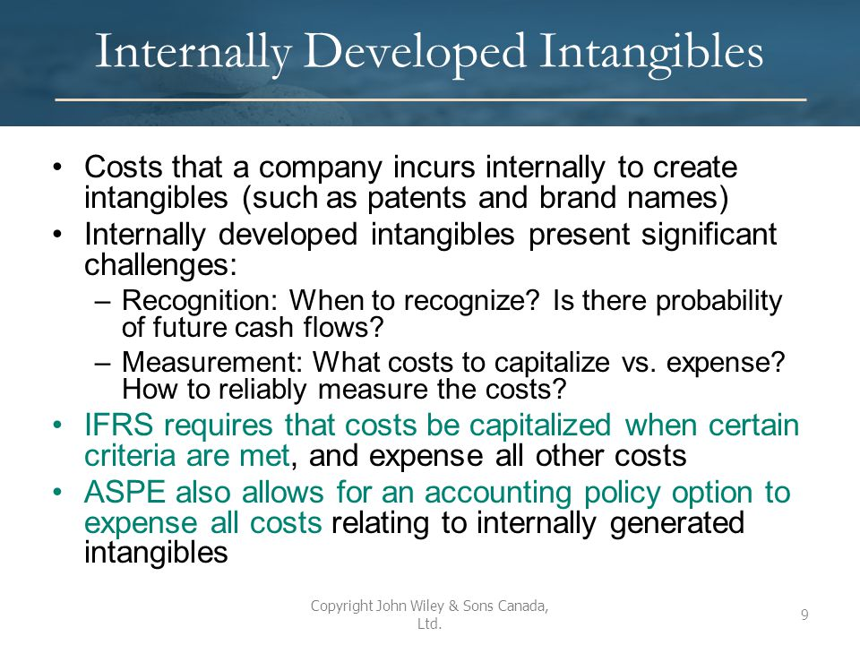 Internally Developed Intangibles