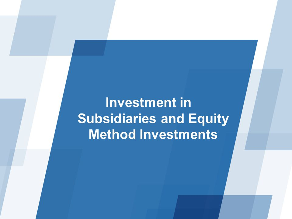 Investment in Subsidiaries and Equity Method Investments