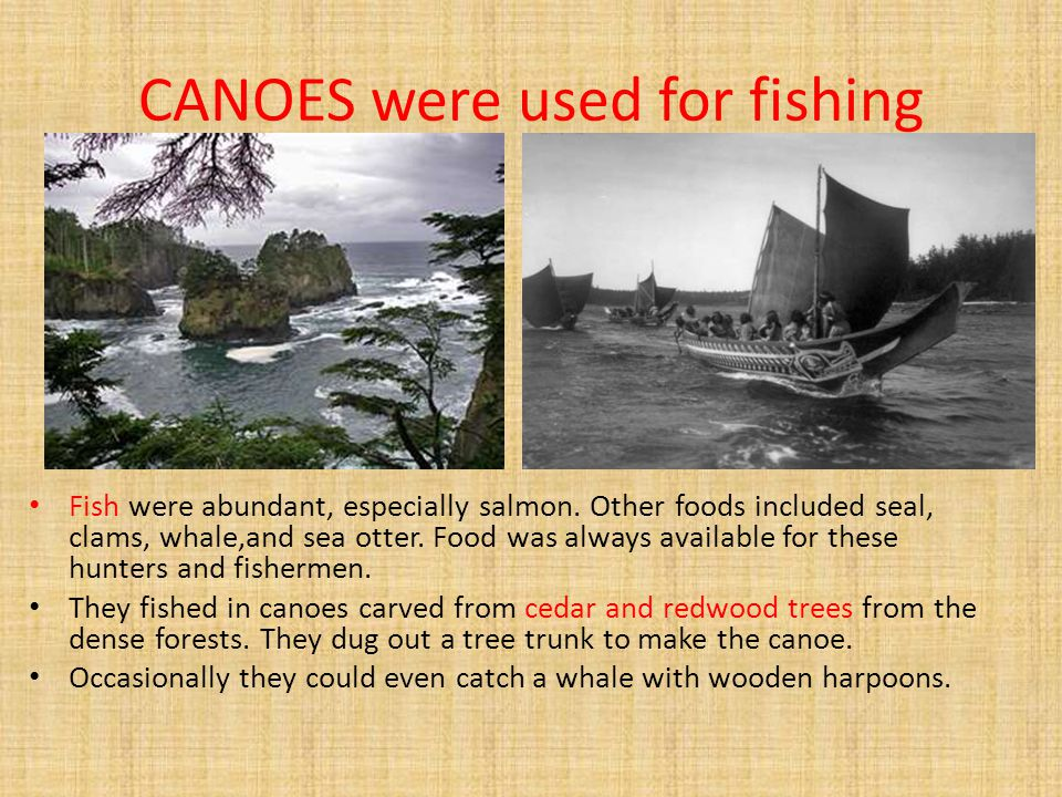 CANOES were used for fishing