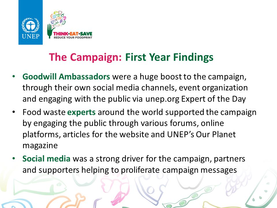 The Campaign: First Year Findings