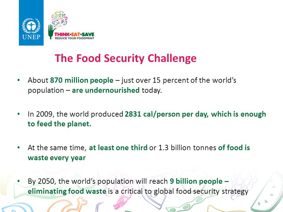 The Food Security Challenge