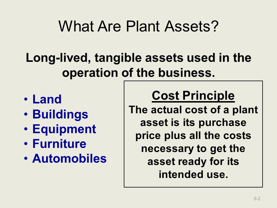 Long-lived, tangible assets used in the operation of the business.