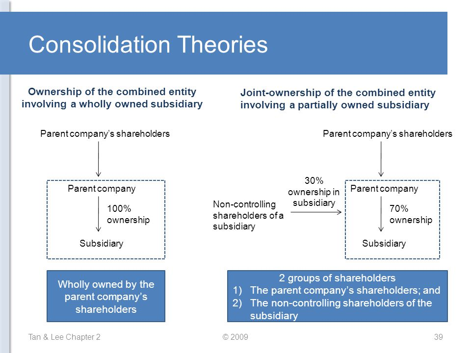 Consolidation Theories