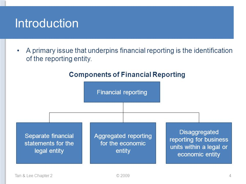 Components of Financial Reporting