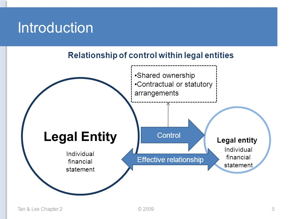 Relationship of control within legal entities