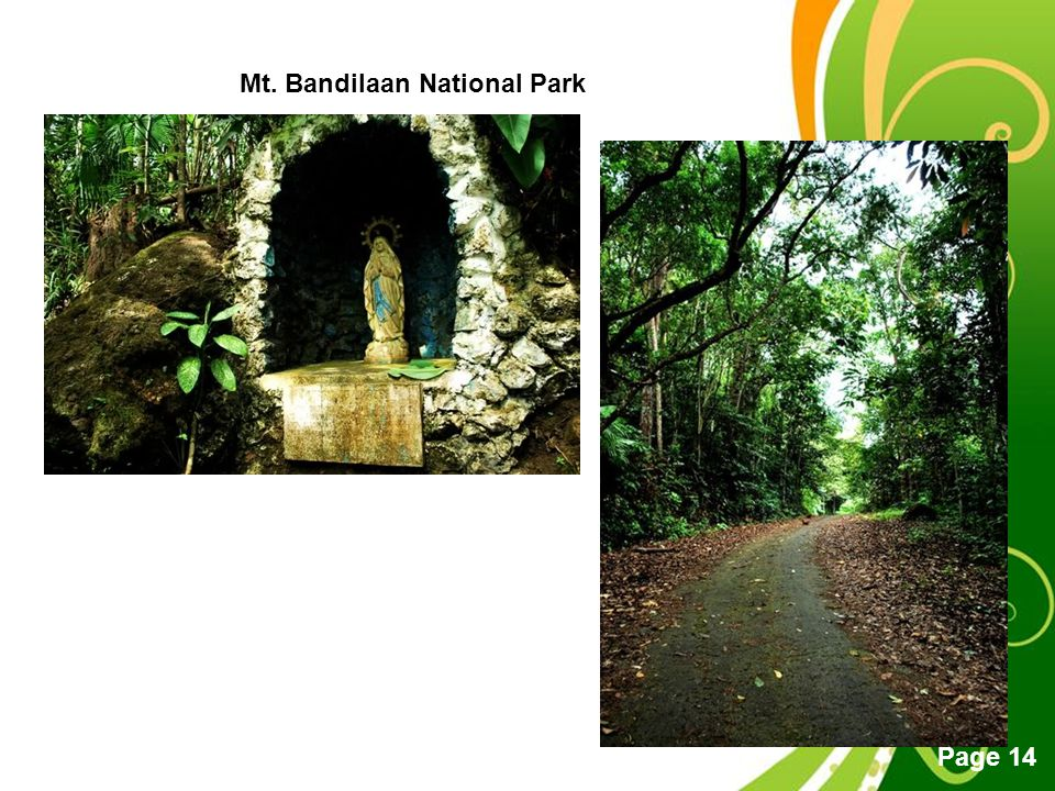 Mt. Bandilaan National Park