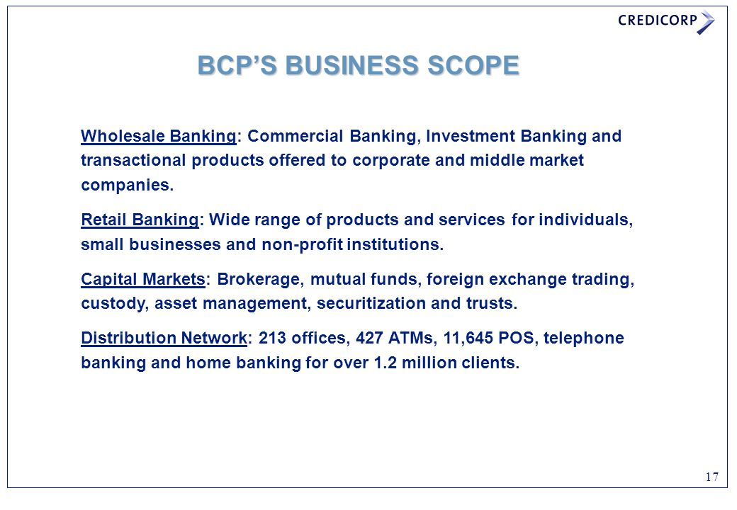 BCP'S BUSINESS SCOPE