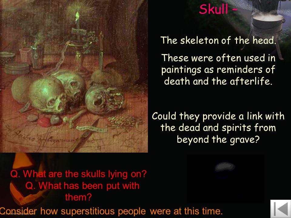 Skull – The skeleton of the head.