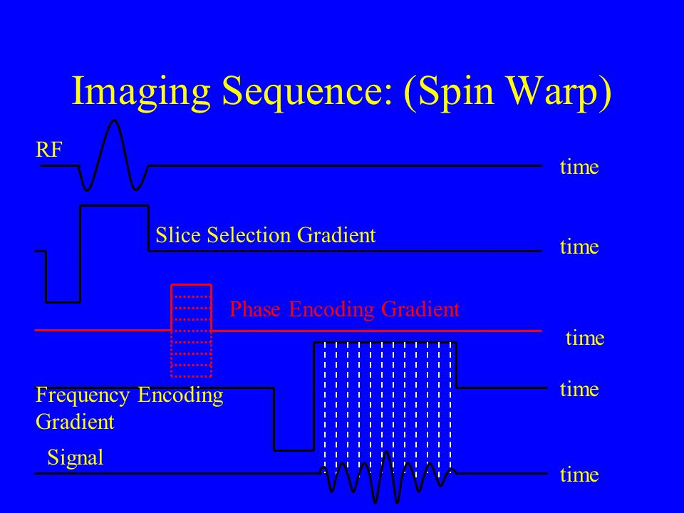 Imaging Sequence: (Spin Warp)