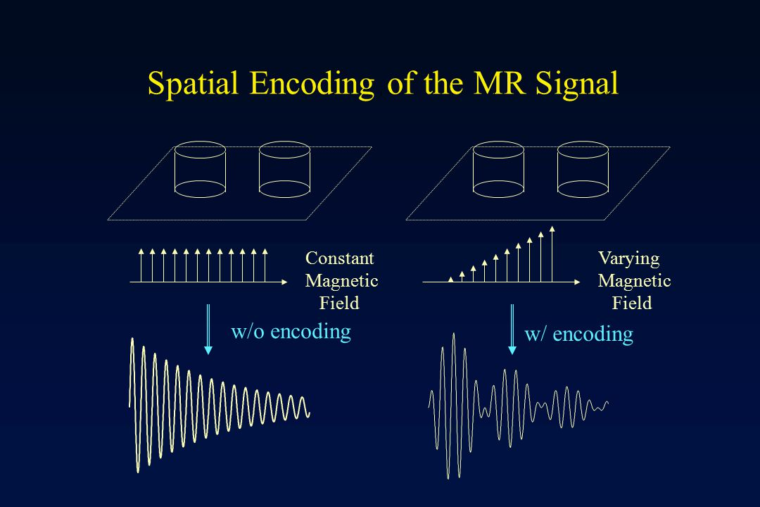 Spatial Encoding of the MR Signal