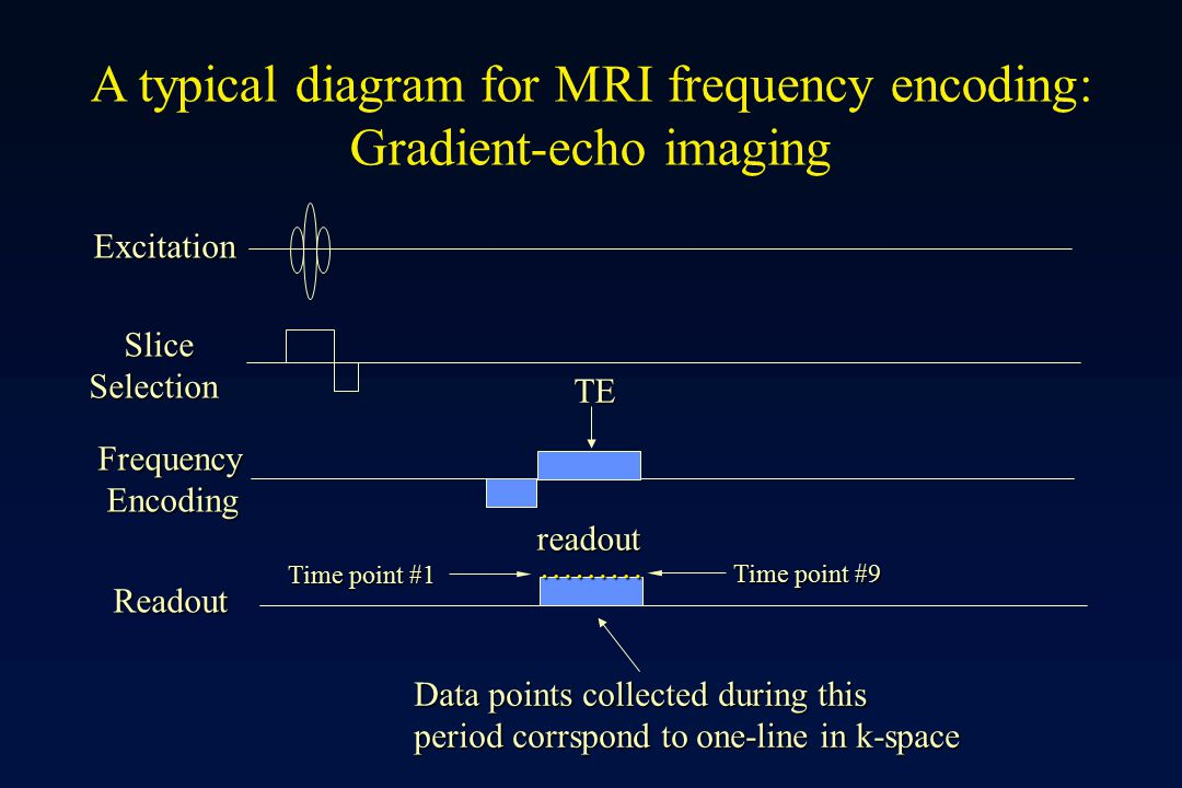 A typical diagram for MRI frequency encoding: Gradient-echo imaging
