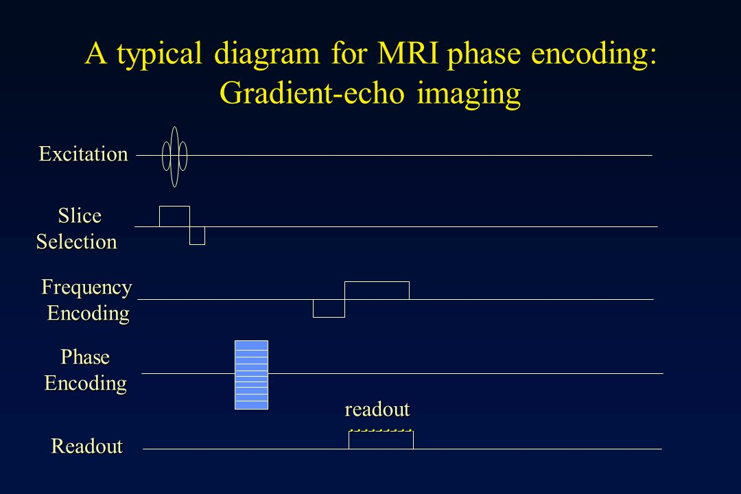 A typical diagram for MRI phase encoding: Gradient-echo imaging