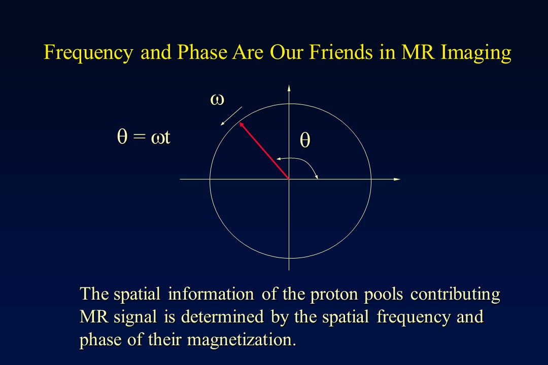 Frequency and Phase Are Our Friends in MR Imaging