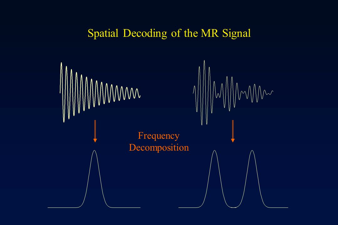 Spatial Decoding of the MR Signal