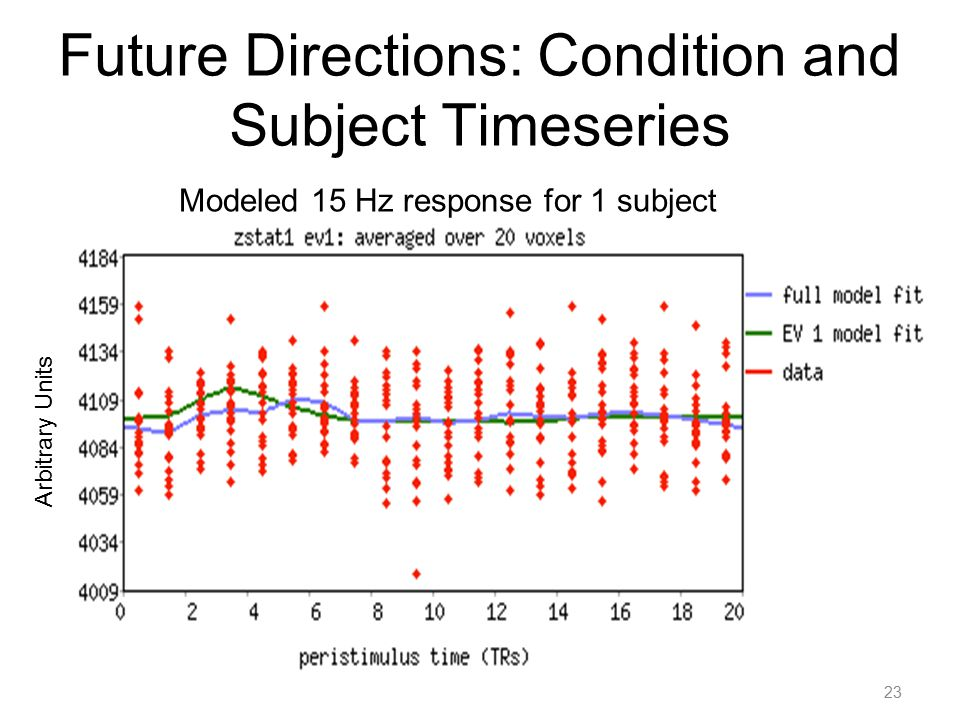Future Directions: Condition and Subject Timeseries