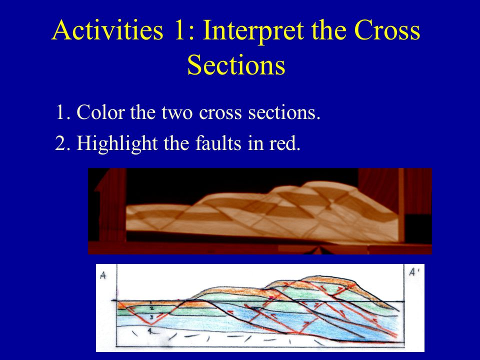 Activities 1: Interpret the Cross Sections