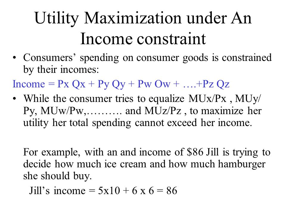 Utility Maximization under An Income constraint