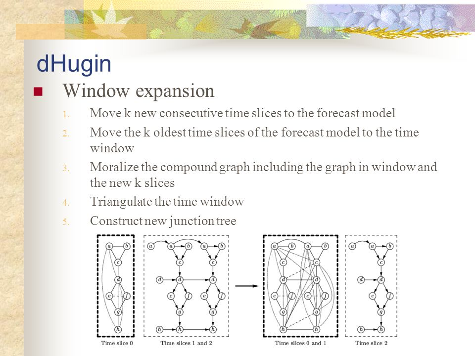 dHugin Window expansion