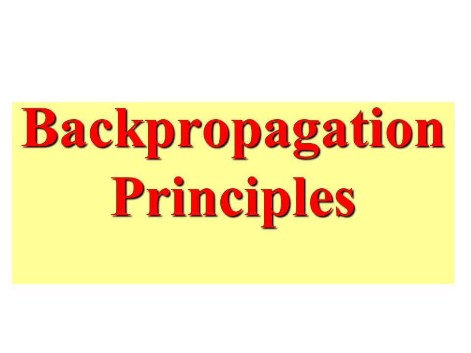 Backpropagation Principles