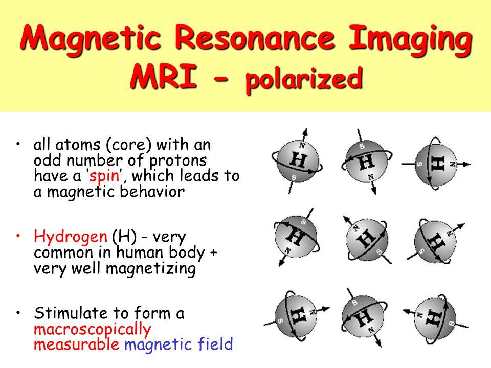 Magnetic Resonance Imaging MRI - polarized