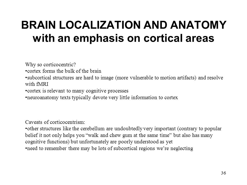 BRAIN LOCALIZATION AND ANATOMY with an emphasis on cortical areas