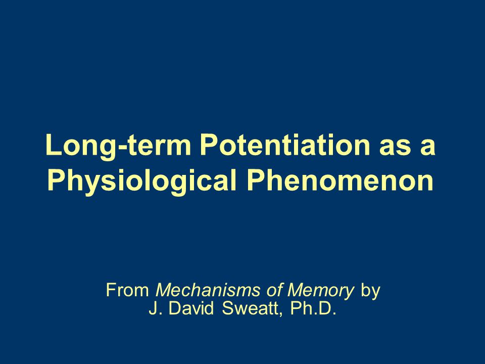 Long-term Potentiation as a Physiological Phenomenon