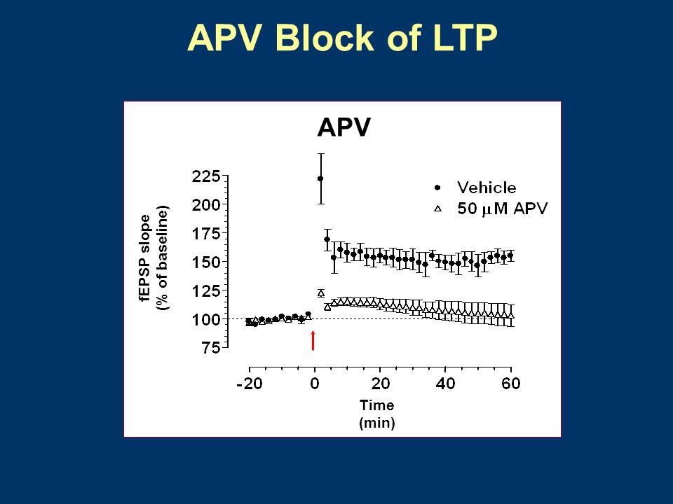 APV Block of LTP APV Time (min) (% of baseline) fEPSP slope