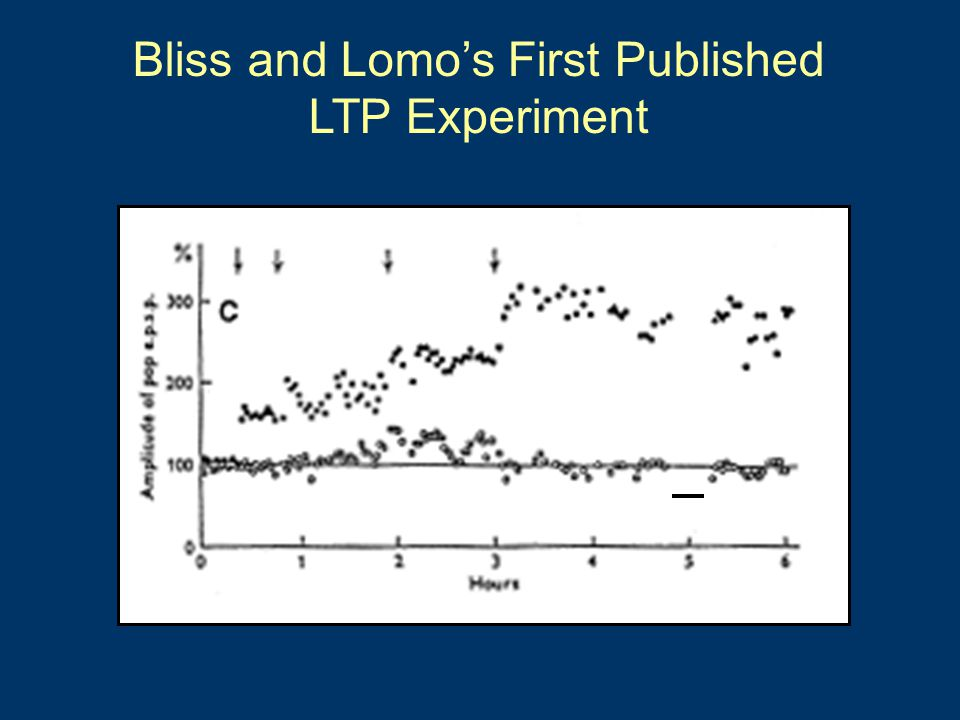 Bliss and Lomo's First Published LTP Experiment