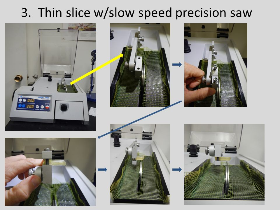 3. Thin slice w/slow speed precision saw