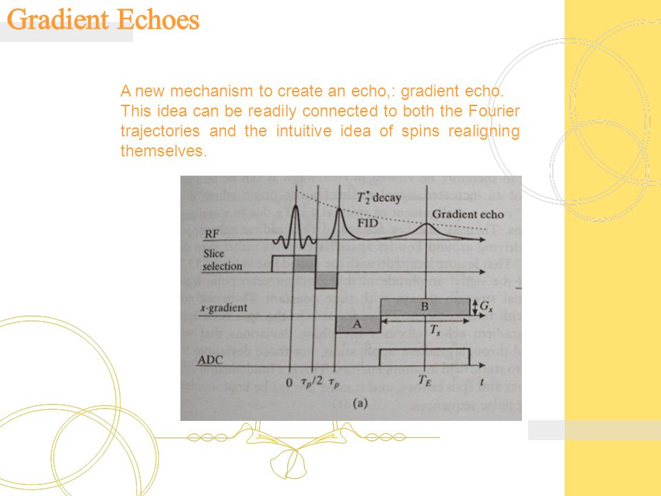 Gradient Echoes A new mechanism to create an echo,: gradient echo.