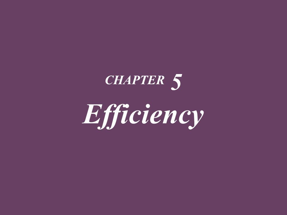 CHAPTER 5 Efficiency