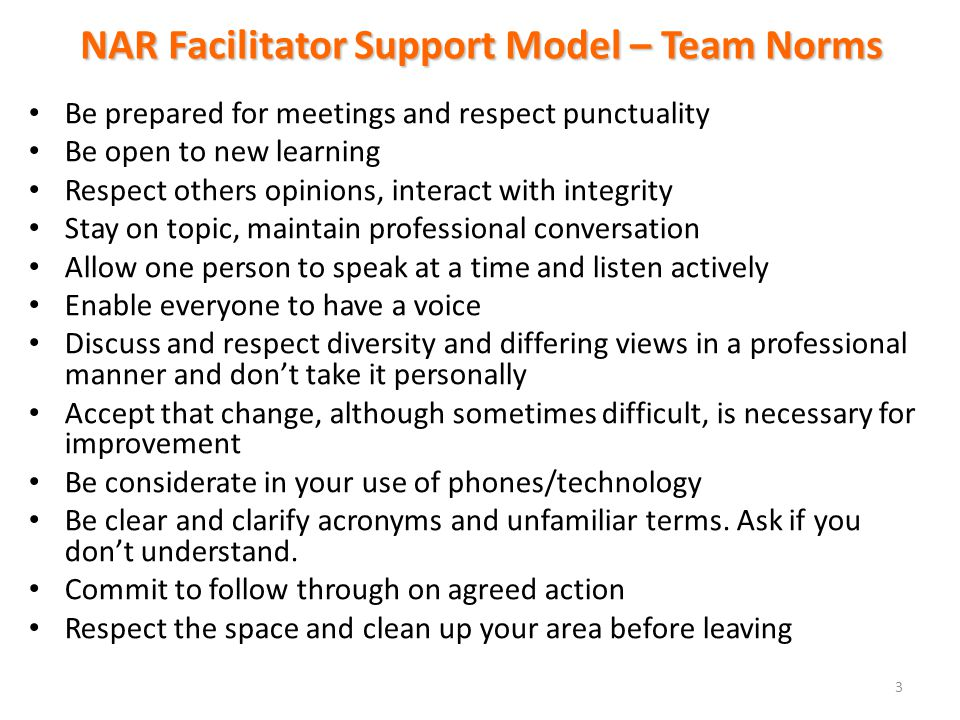 NAR Facilitator Support Model – Team Norms