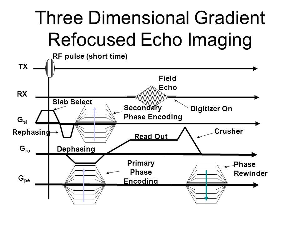 Three Dimensional Gradient Refocused Echo Imaging