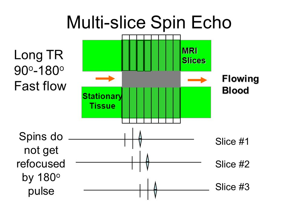 Spins do not get refocused by 180o pulse