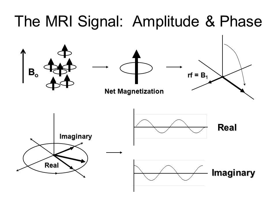 The MRI Signal: Amplitude & Phase