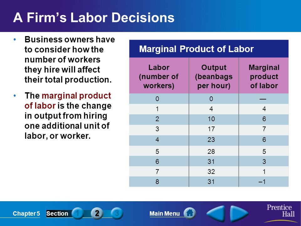 A Firm's Labor Decisions