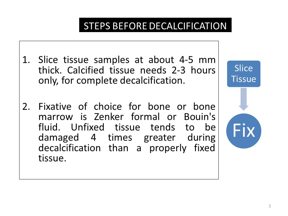 STEPS BEFORE DECALCIFICATION